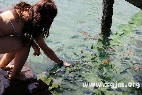梦见很多鱼_周公解梦梦到很多鱼是什么意思