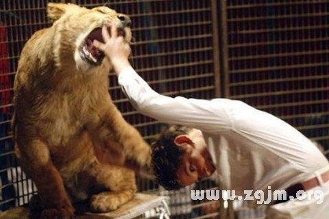 梦见自己己被狮子咬伤