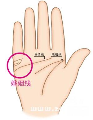 手指纹路巧看命 双手断掌手相图解